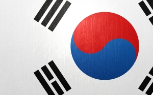 South_Korea_Leather_Flag_by_igorrcarvalho